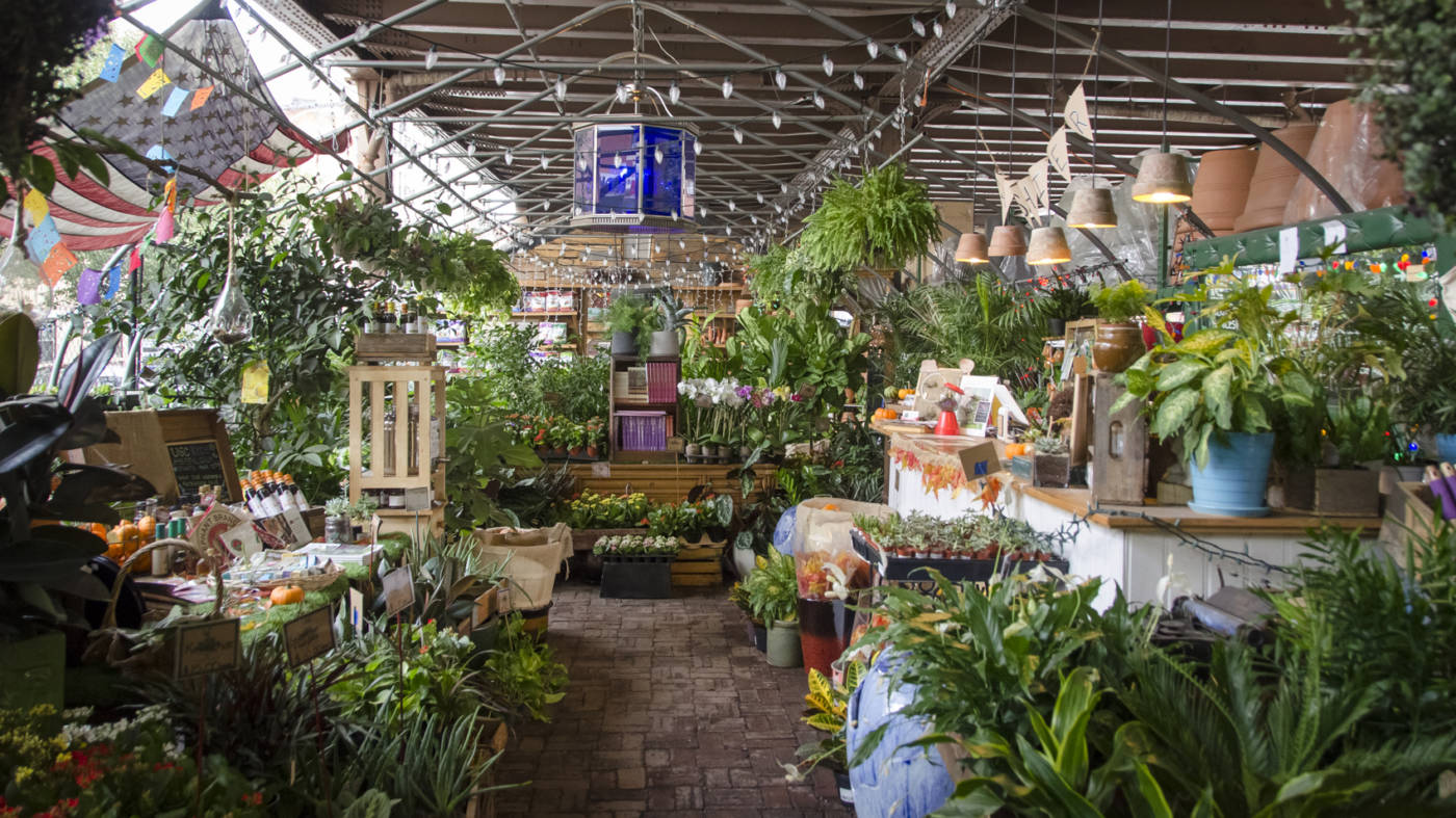 the urban garden center brings gardening to every new yorker by garden collage - Urban Garden