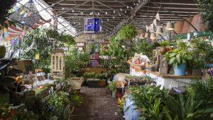 Gentil Urban Garden Center Top 10 Plant Stores In NYC