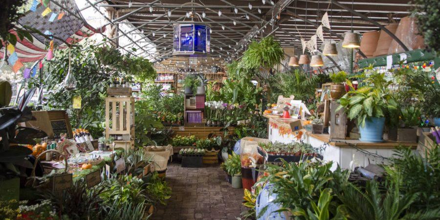Urban Garden Center Top 10 Plant Stores In NYC